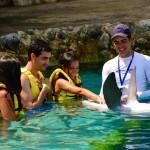 Treinador de golfinhos em Cozumel