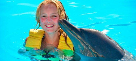 ¿Donde nadar con delfines? En la Riviera Maya por supuesto!