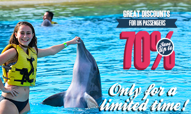 Swim with dolphins in Riviera Maya - Triple Adventure