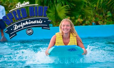 Nadar con delfines en Riviera Maya Park- Swim Speed Ride - Adrenalina y velociodad.