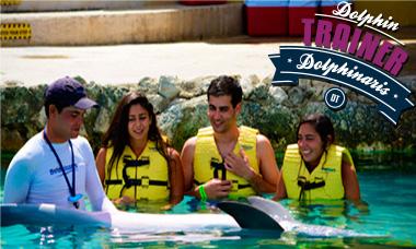Nadar con delfines en Cozumel - Entrenador de delfines.