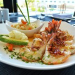 The Sundeck Lounge Dolphinaris Cancun - A gastronomic experience.
