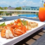 The Sundeck Lounge Dolphinaris Cancun -  Dolphin view terrace.