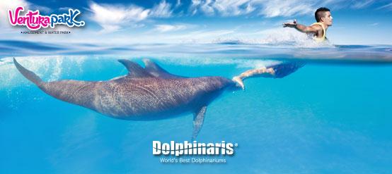 Disfruta del mundo Dolphinaris solo en Ventura park.