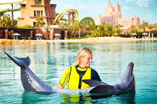 15 mejores lugares para nadar con delfines en el mundo [dolphinaris-dubay]