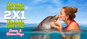 2-x-1-swimming-with-dolphins-cancun-riviera-maya