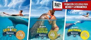 Descuentos para mexicanos y Latinoamericanos en nados con delfines en Cancun y Riviera Maya