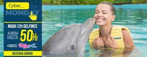 Promoción Cyber Monday - Dolphinaris: Nadar con delfines en Cancún y Riviera Maya.