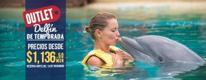Delfín de temporada ofertas en nados con delfines en Cancún y Riviera Maya