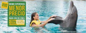 Misma experiencia de nado con delfines a un precio menor en Cozumel con Todo Incluido
