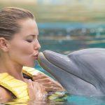 nadar-com-golfinhos-dolphinaris-riviera-maya-park