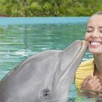 nado-com-golfinhos-dolphinaris-riviera-maya-park