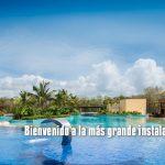 nadar-con-delfines-dolphinaris-riviera-maya-park1