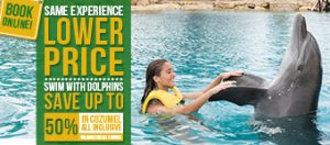Swim With Dolphins In Cozumel With All Inclusive - Save Up To 50%