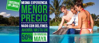 Nadar con delfines en Riviera Maya Park al mejor precio.