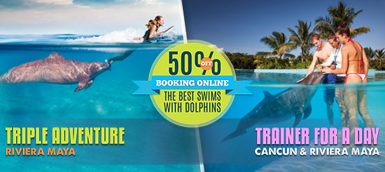 50& OFF in Triple Adventure and Dolphin Trainer For a Day program
