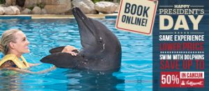 President's Day Weekend Deal - Swim With Dolphins in Cancun & Riviera Maya