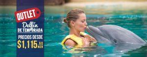 Delfín de Temporada - Outlet Nado con Delfines en Cancún Delfín de Temporada - Outlet Nado con Delfines en Cancún