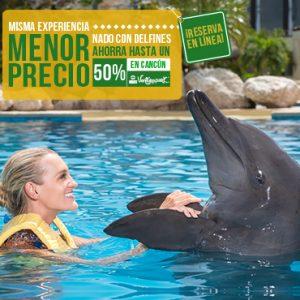 Ahorros de hasta un 50% en Nados con delfines en Cancún, Riviera Maya, Tulum y Cozumel.