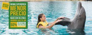 Experiencia de Nado con delfines todo Incluido en Cozumel