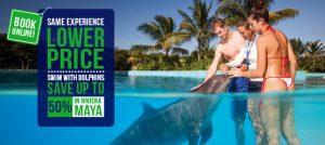 Experiencias de Nado con delfines en Riviera Maya