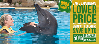 Swimming With Dolphins Deals in Cancun, Cuzumel & Riviera Maya
