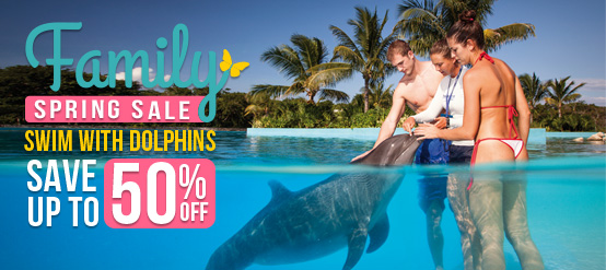 Family Spring Break Sale at Dolphianris - Swim with Dolphins discounts
