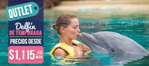 Descuentos de Semana Santa en Dolphinaris. Nada con delfines en Cancún y Riviera Maya