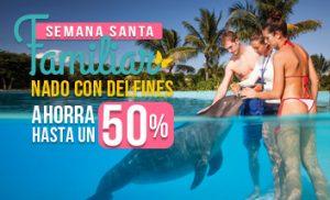 Promociones semana santa nado con delfines en Cancún Riviera Maya