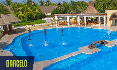 Spring break deals all swim with dolphins in Barcelo Riviera Maya + free Wet'n Wild Cancun