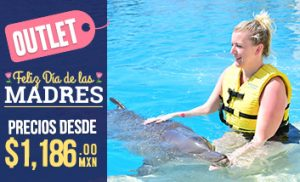 Outlet Dolphinaris