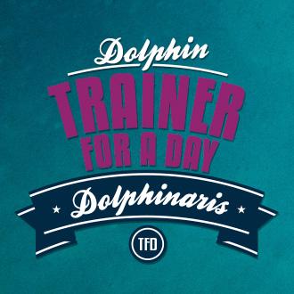 Entrenador de Delfines por un D�a