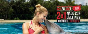 Nadar con Delfines en Dolphinaris Cancún, Riviera Maya y Cozumel. Descuentos Hot Sale 2018