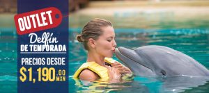 Outlet de Descuentos en Dolphinaris nada con delfines Cancún, Riviera Maya, Tulum y Cozumel