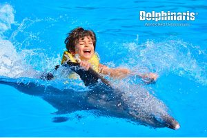 Dolphin Swim and Ride en Dolphinaris Riviera Maya Park