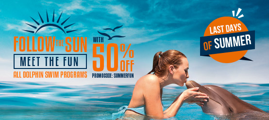 Summer deals at dolphinaris. Swim with dolphins in Cancun, Riviera Maya, Tulum & Cozumel