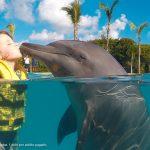 dolphinaris-ninos-nadan-con-delfines-gratis-tulum