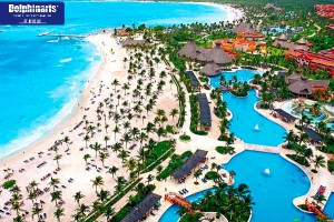 Best Places for Dolphin Swims in the Riviera Maya Barceló