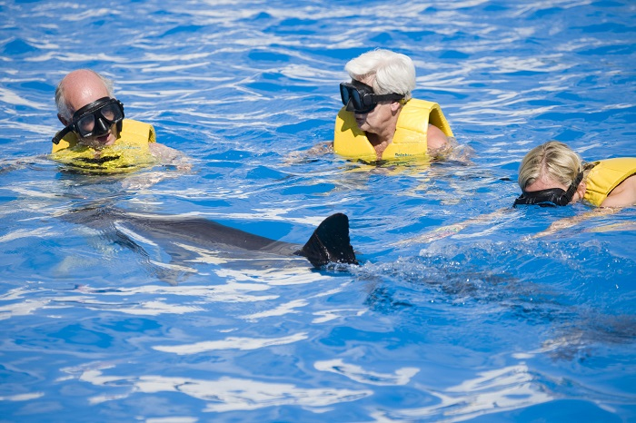And of course swimming with dolphins in Tulum