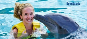Find the BEST prices on dolphin swims in Cancun [4 Step How-to guide]
