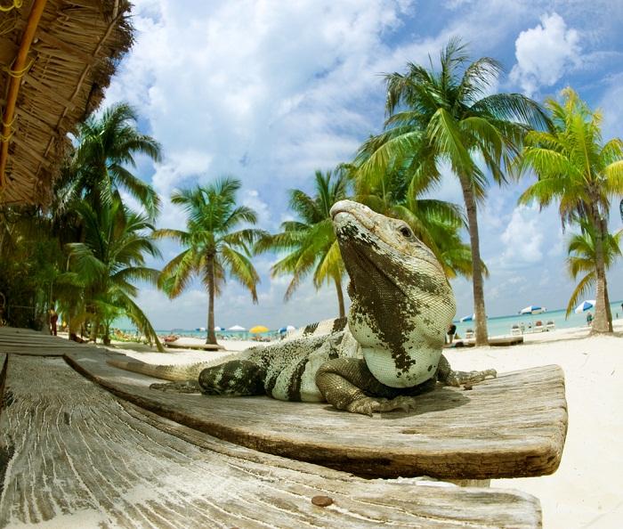 Cancun beautiful landscapes
