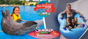 Cancun summer promo swim with dolphins