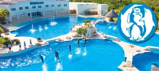 Dolphinaris Cancún recibe la certificación de la Asociación Europea para Mamíferos Acuáticos (EAAM)