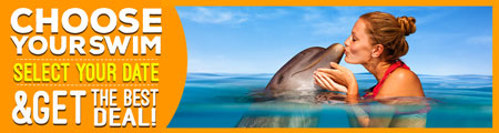 Choose your dolphin swim get the best deal dynamic pricing Cancun, Riviera Maya, Tulum and Cozumel.