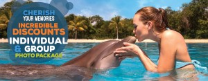Swim with dolphins photo package online deal.
