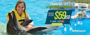Nadar con delfines en Cancún con increíbles descuentos para mexicanos y latinoamérica con Wet'n Wild Cancún Gratis.