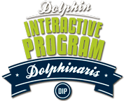 Dolphin Interactive Program - The best dolphin experience