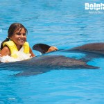 Fun dolphin Dorsal Ride activity.