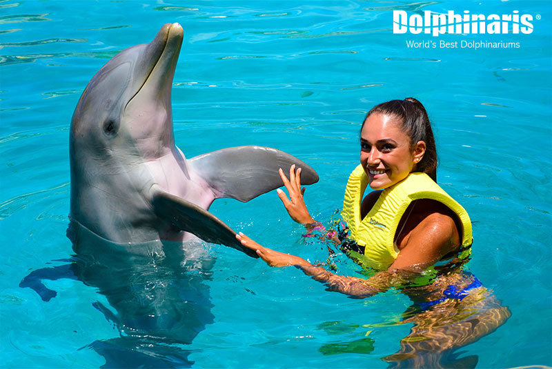 Unforgettable dolphin encounter at Dolphinaris Cozumel.