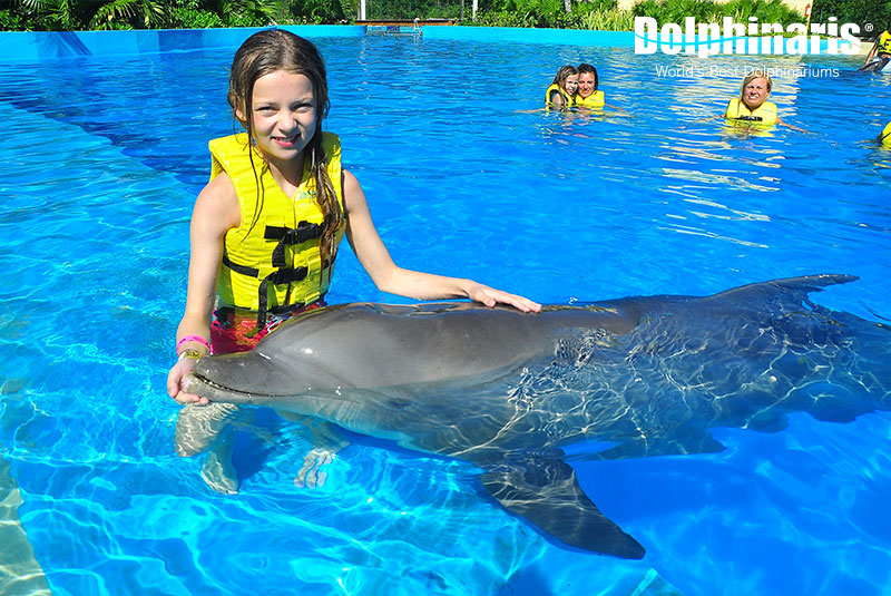 Dolphin encounter at Dolphinaris Riviera Maya Park.